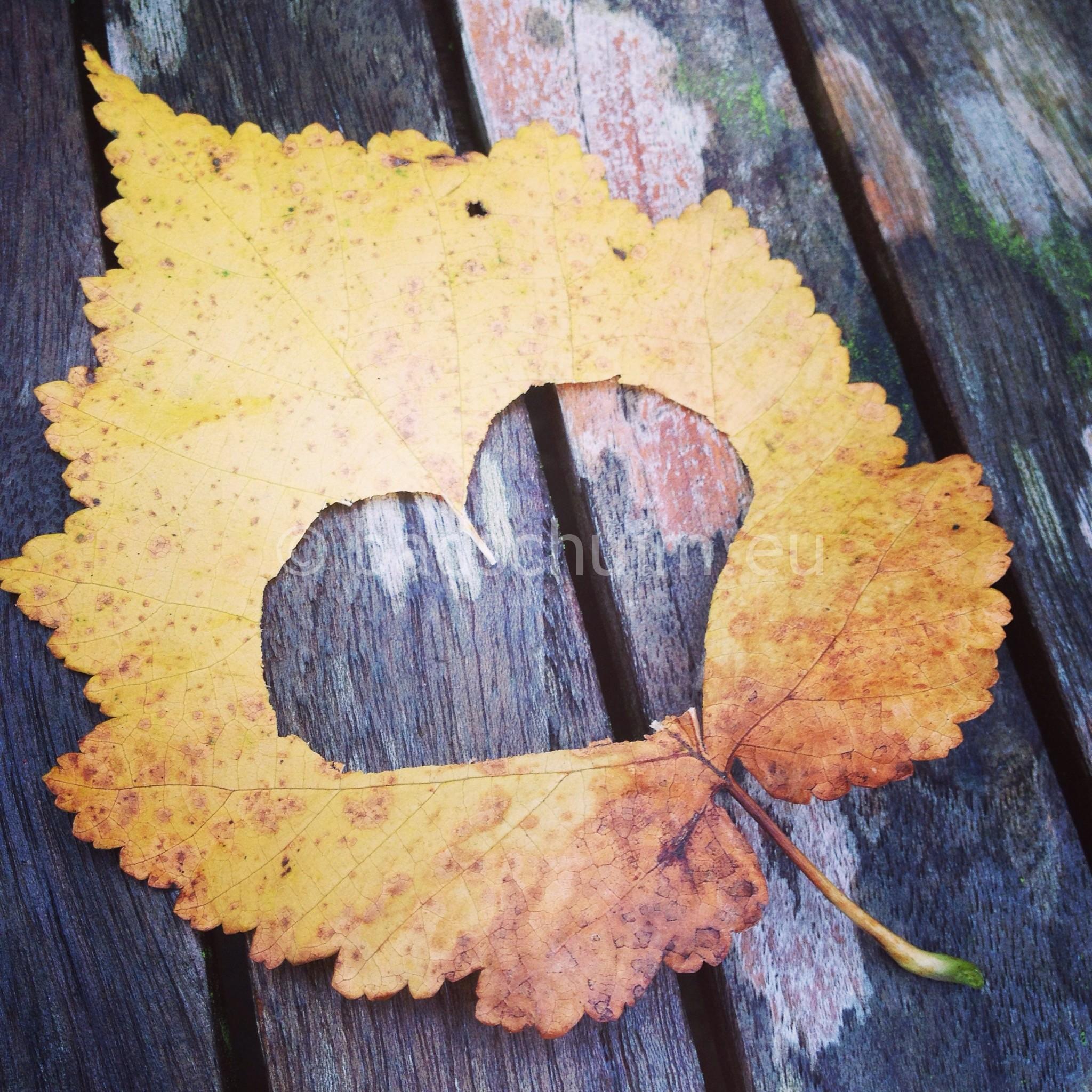 Knutselplezier met herfstbladeren