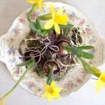 voorjaarsbollen in een paasei