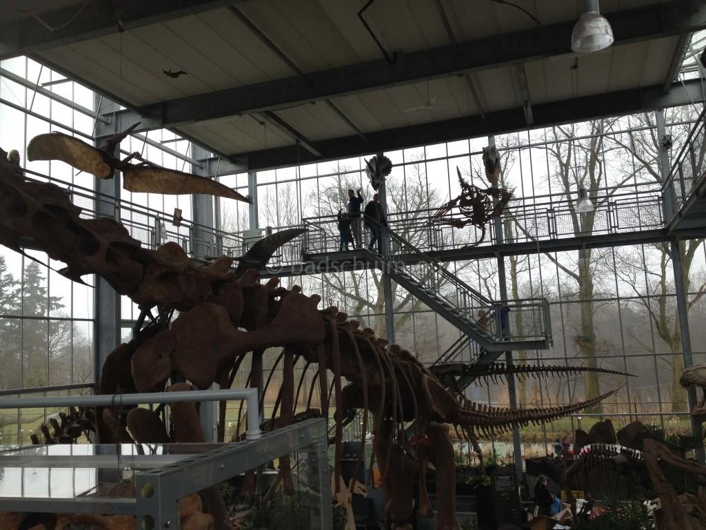 Dagje dino s kijken - oertijdmuseum I Creatief Lifestyle blog Badschuim