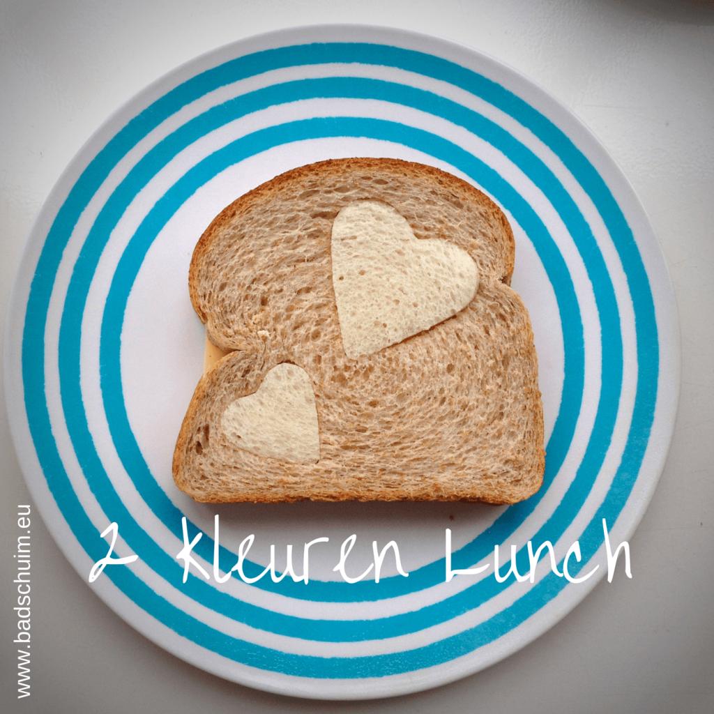 Broodtrommel tips wk 5 - 2 kleuren Lunch 01 I gemaakt door het creatief lifestyle blog Badschuim