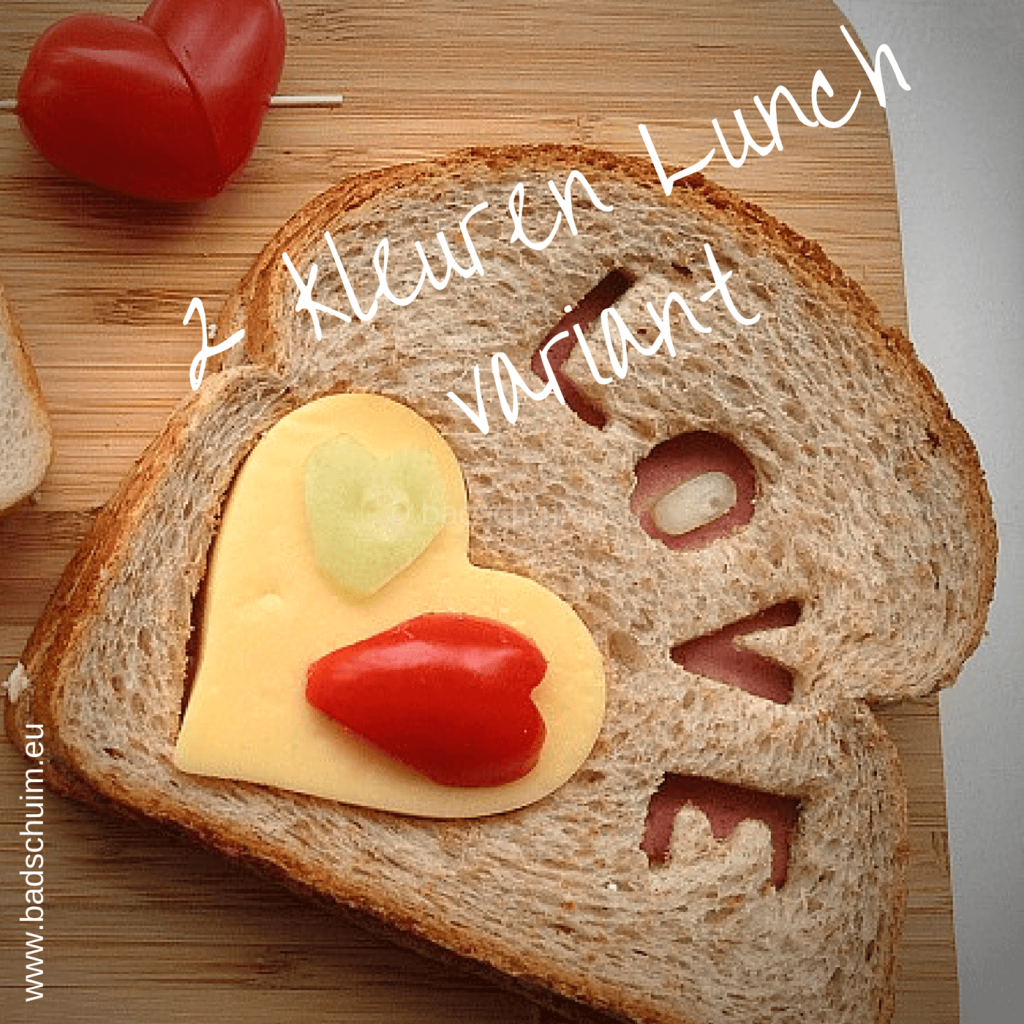 Broodtrommel tips wk 5 - 2 kleuren Lunch 03 I gemaakt door het creatief lifestyle blog Badschuim