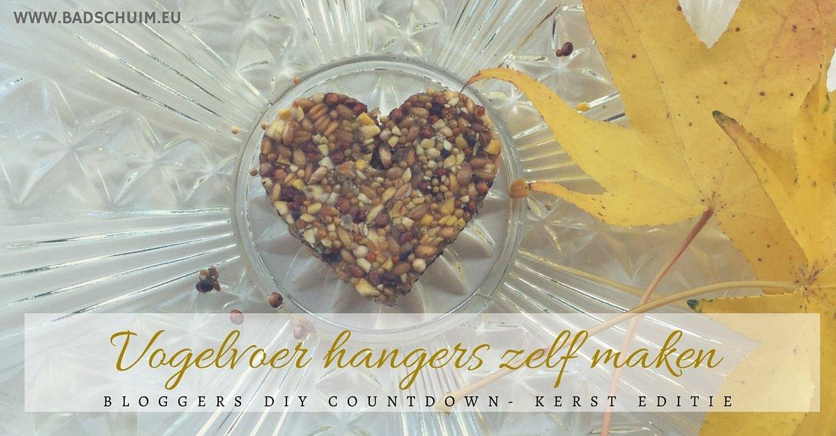Vogelvoer hangers zelf maken - hier vind je het stappenplan met foto's - gemaakt door het creatief lifestyle blog www.badschuim.eu