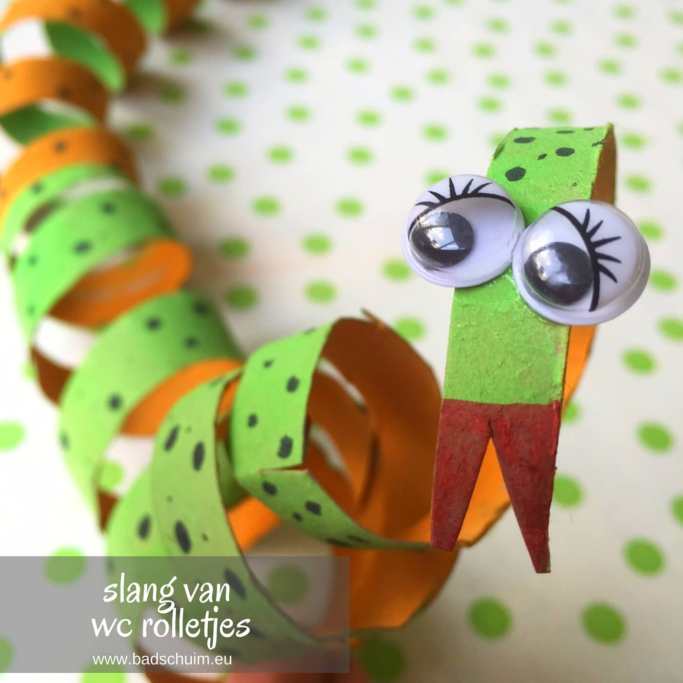 Maak je eigen dierentuin van wc rolletjes. Dit is deel 2: een slang van een wc rolletje. Makkelijk te maken met dit foto diy stappenplan!