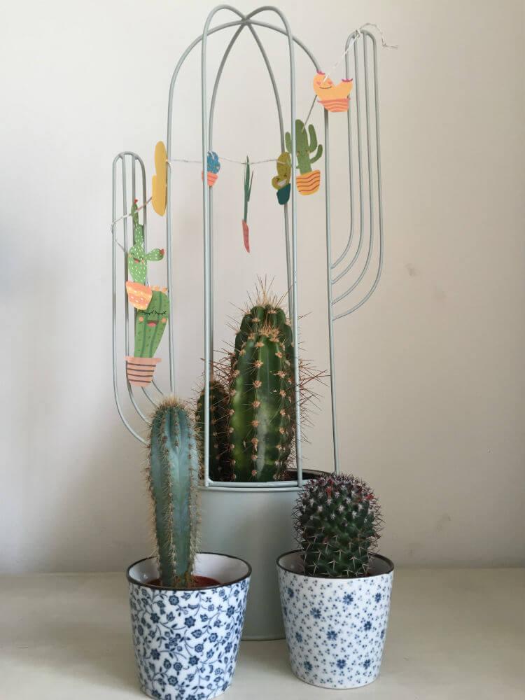 Cactus Slinger - Cactus DIY_07