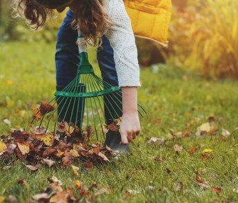 Tuin herfstklaar maken