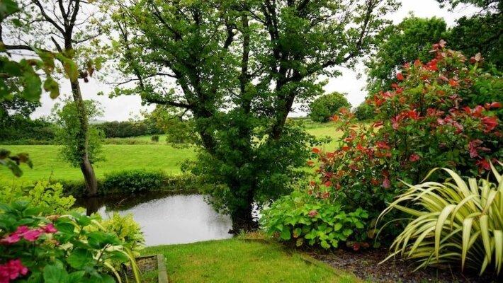 5x items die niet in jouw tuin mogen ontbreken deze zomer